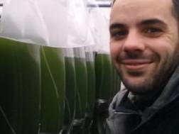 Cosmetici green, il segreto delle alghe bio italiane. <br>Un successo tutto italiano.